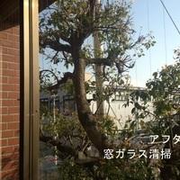 窓ガラス清掃 群馬動物専門学校 様(群馬県前橋市)のサムネイル