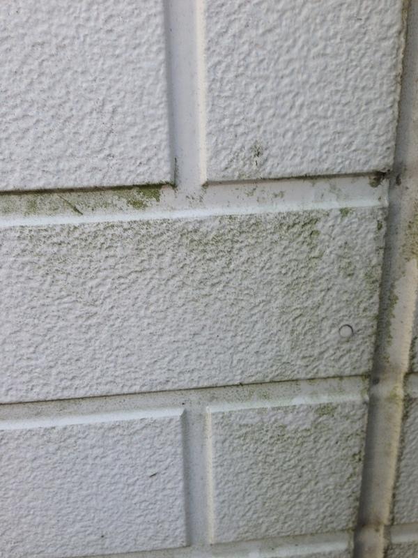 外壁清掃(群馬県前橋市)のサムネイル